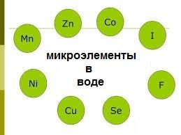 Кто такие микроэлементы?